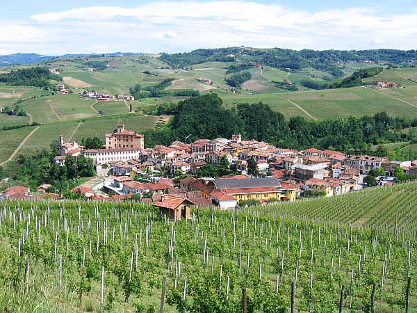ALBA_Wines_2007_City_of_Barolo
