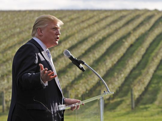 trump-vineyard
