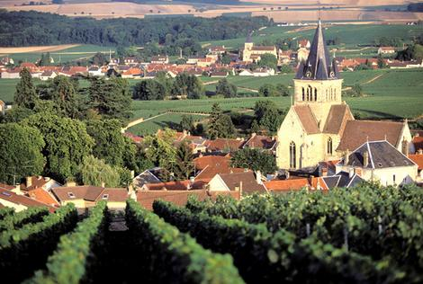 SHD travel, June 25, take 5 drinkers paradises. Champagne, France. CREDIT: AFP.  FRANCE, MARNE (51) VINEYARDS BETWEEN REIMS AND EPERNAY.